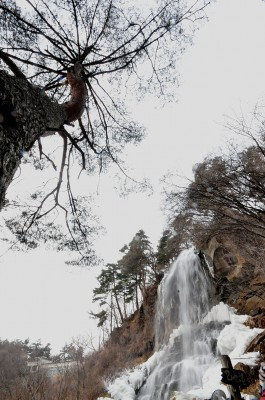 滝 013